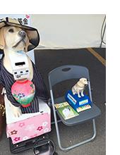 全国盲導犬基金