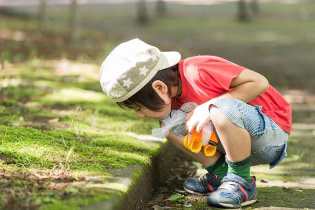 特別児童扶養手当