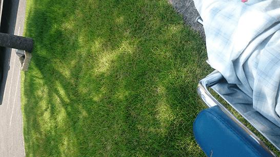 車椅子からの目線