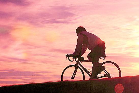 サイクリング 03